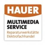 Hauer Multimedia Service, Herbert Hauer
